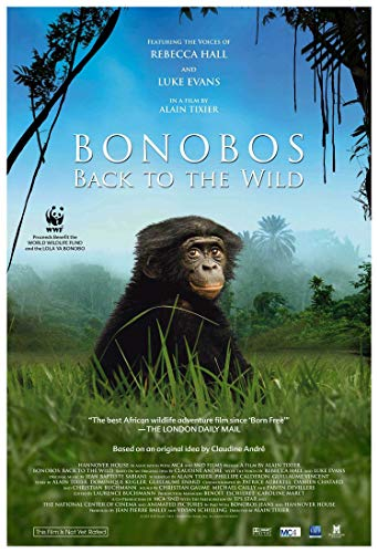 Watch Bonobos: Back to the Wild Online