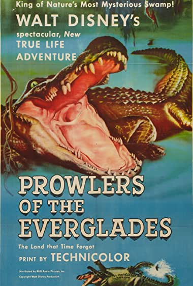 Watch Prowlers of the Everglades Online