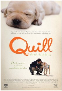 Watch Quill: The Life of a Guide Dog Online