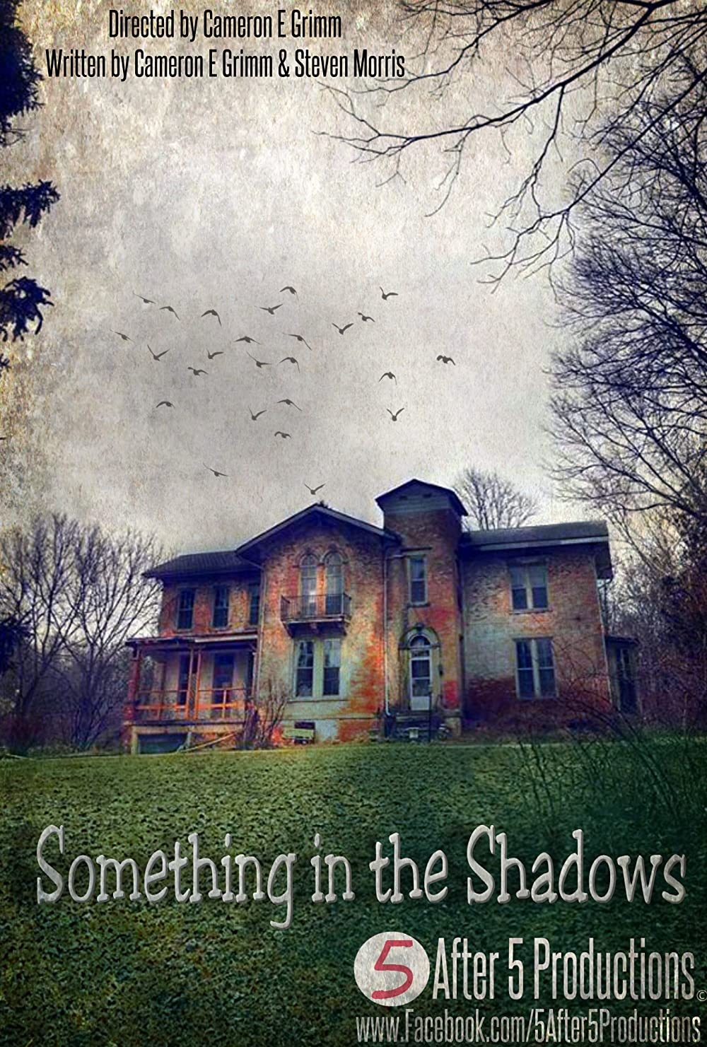Watch Something in the Shadows Online