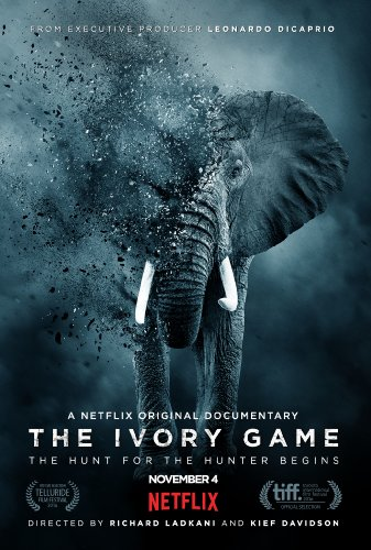 Watch The Ivory Game Online