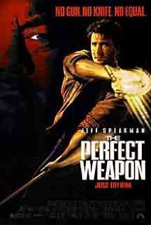 Watch The Perfect Weapon Online