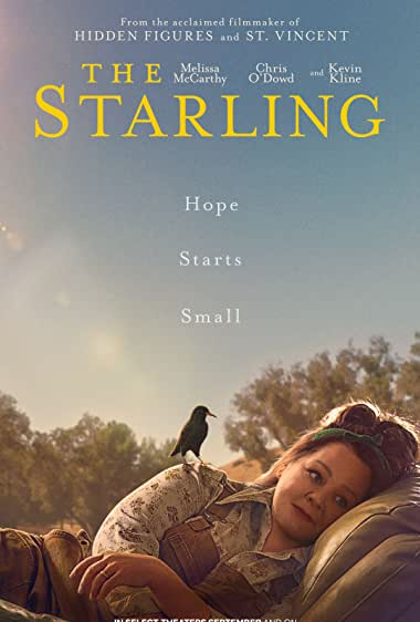 Watch The Starling Online