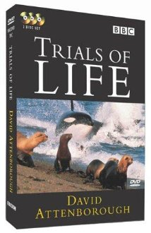 Watch The Trials of Life Online
