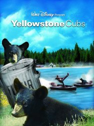 Watch Yellowstone Cubs Online